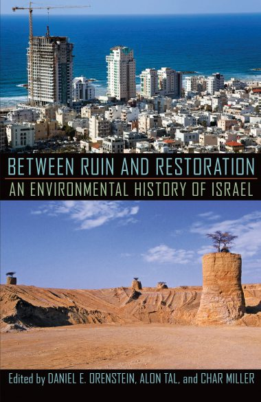Between Ruin and Restoration