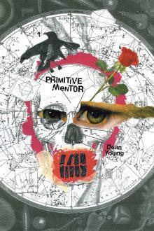 Primitive Mentor