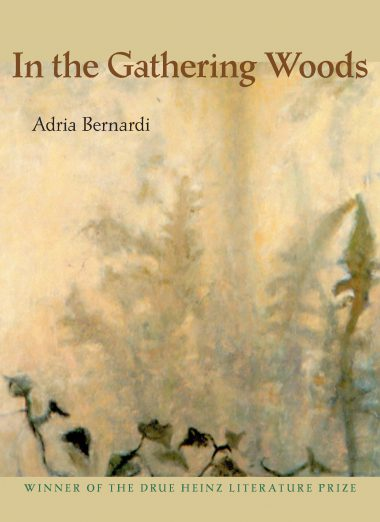 In the Gathering Woods