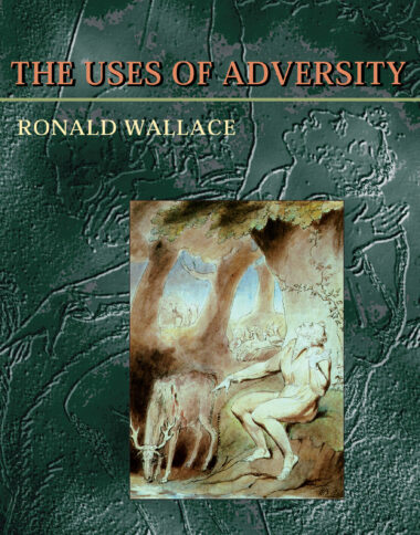 Uses Of Adversity