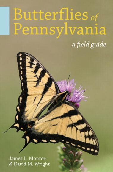 Butterflies of Pennsylvania