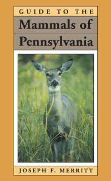 Guide to the Mammals of Pennsylvania