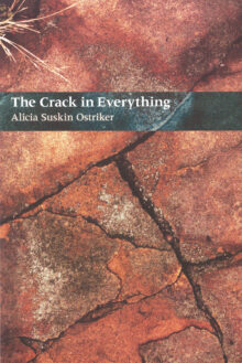 The Crack In Everything