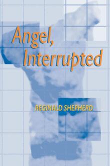 Angel Interrupted