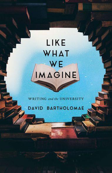 Like What We Imagine